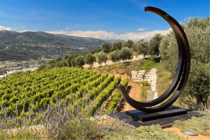 Full-day Wine Tour in French Riviera
