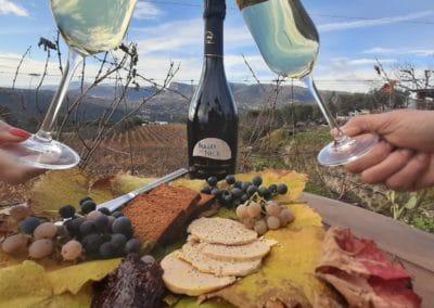 Enjoying a private wine tasting tour