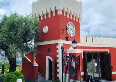 small group - winery - wine tasting tour - full day from Nice and Cannes