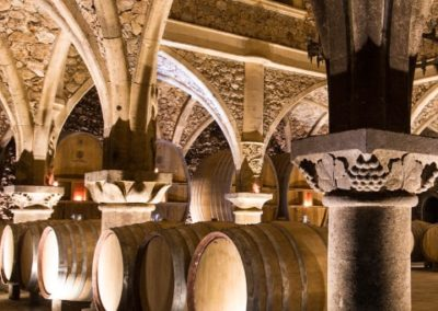 wine cellar - wine tasting - in Côtes de Provence - Full day - wine tour -from Nice and Cannes