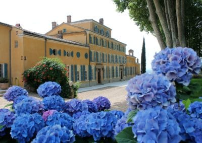 winery - Côtes de Provence - Full day - wine tour -from Nice and Cannes